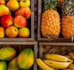 Papaya During Pregnancy – Is it safe to eat?