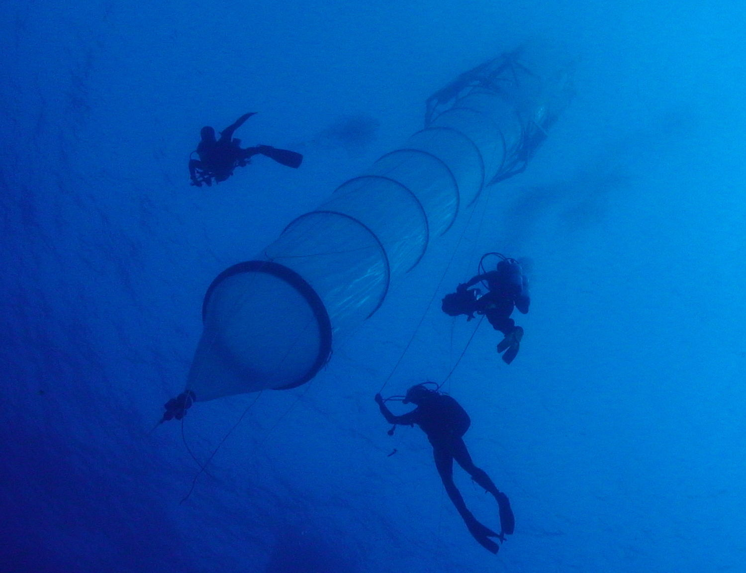 Mesocosm with Divers