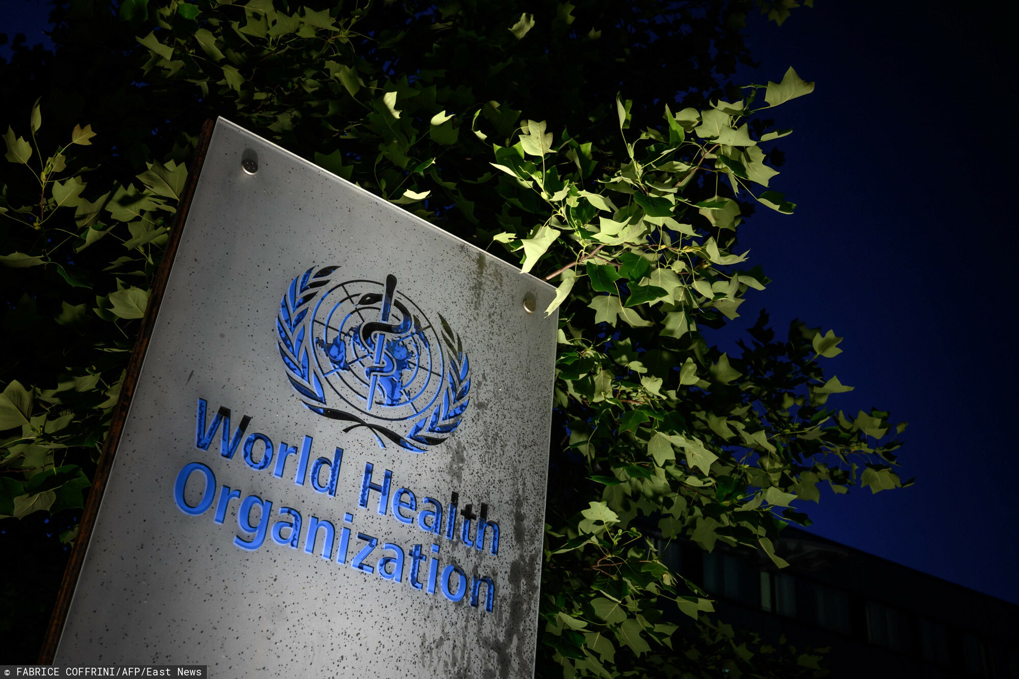 TOPSHOT - A photo taken in the late hours of May 29, 2020 shows a sign of the World Health Organization (WHO) at their headquarters in Geneva amid the COVID-19 outbreak, caused by the novel coronavirus. - President Donald Trump said May 29, 2020, he was breaking off US ties with the World Health Organization, which he says failed to do enough to combat the initial spread of the novel coronavirus. (Photo by Fabrice COFFRINI / AFP)
