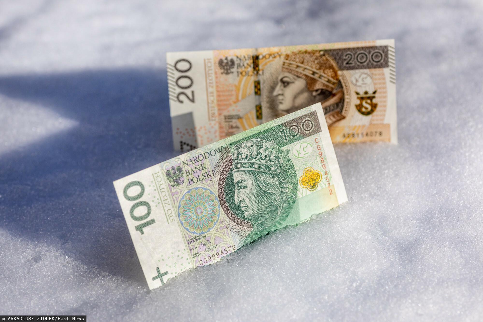 fot: Arkadiusz Ziolek/ East News. n/z Polskie banknoty w sniegu.