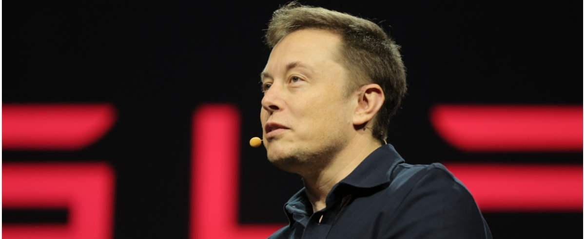 Elon Musk o CD Projekt