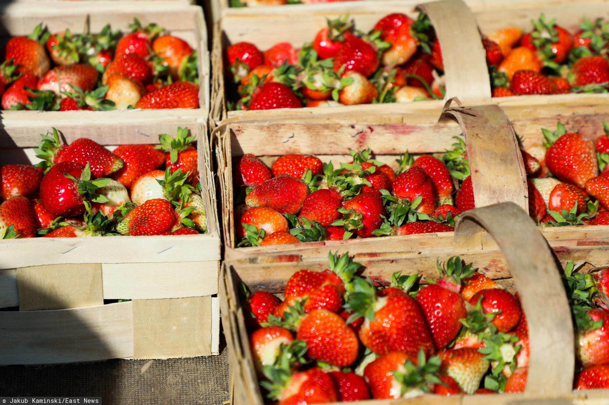 Truskawki z polskich upraw są już dostępne w sklepach
