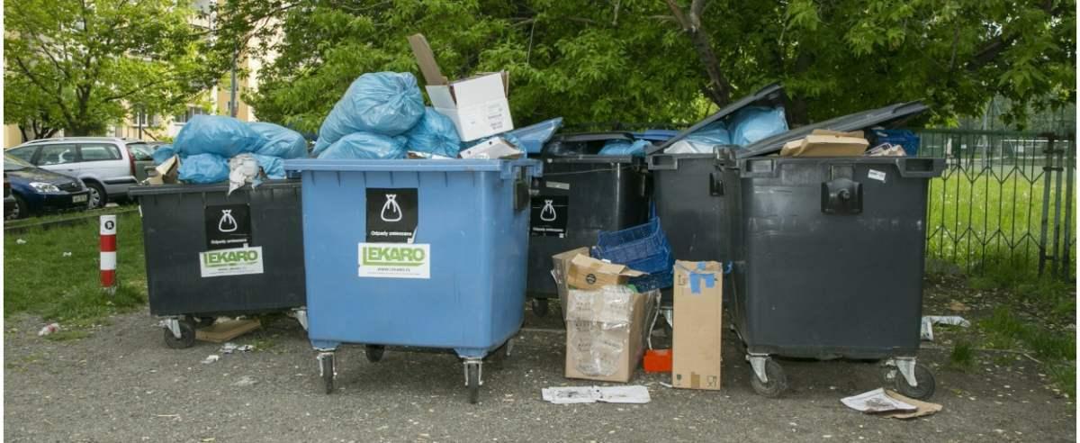 Segregacja śmieci na nowych zasadach?