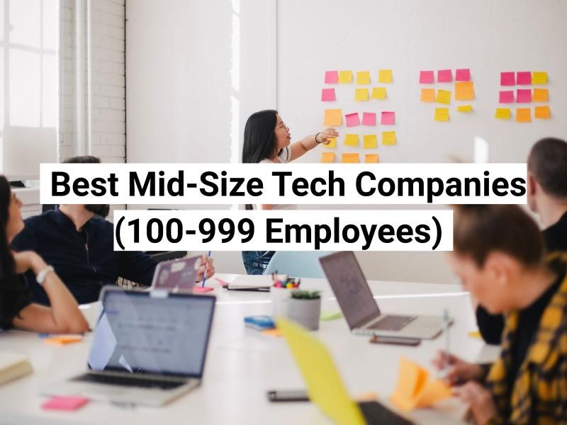 companies with 100-999 employees