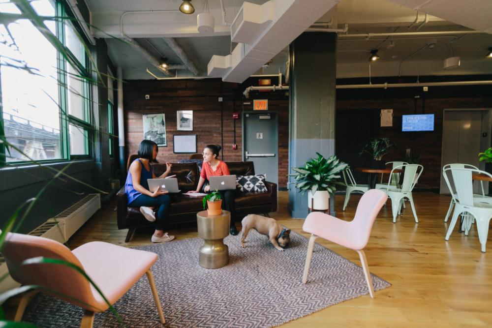 Header: Dumbo Heights Coworking