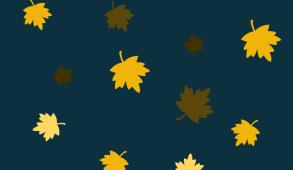 Blog Header: Leaves.png