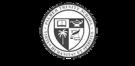 Palmer Trinity Logo