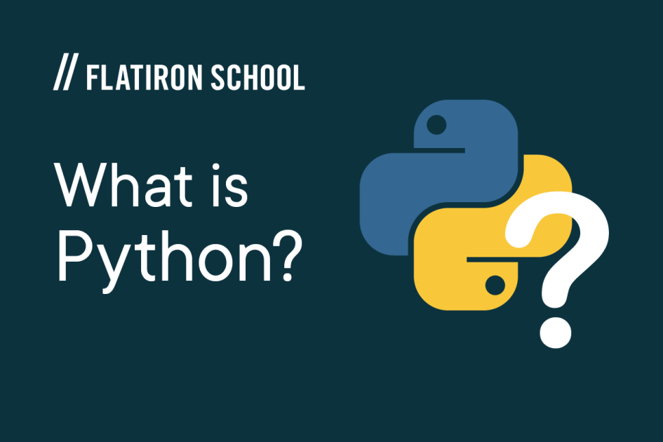 what is python section header image
