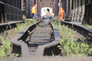 Rail workers clearing vegetation