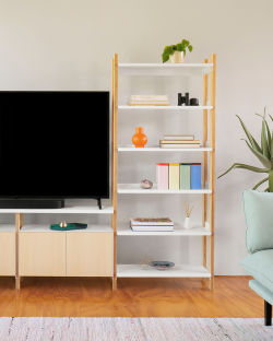 Add a Media Console to your Shelf.