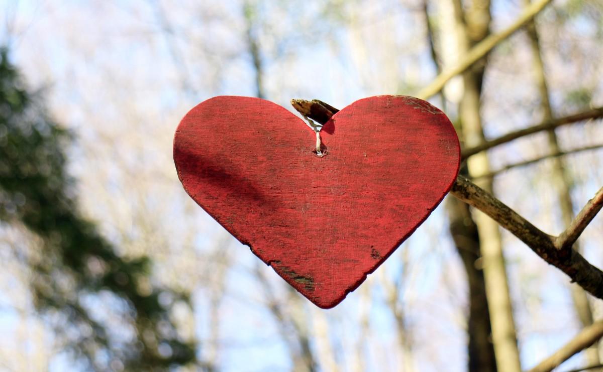 heart wooden heart love symbol wood-1107255.jpg!d