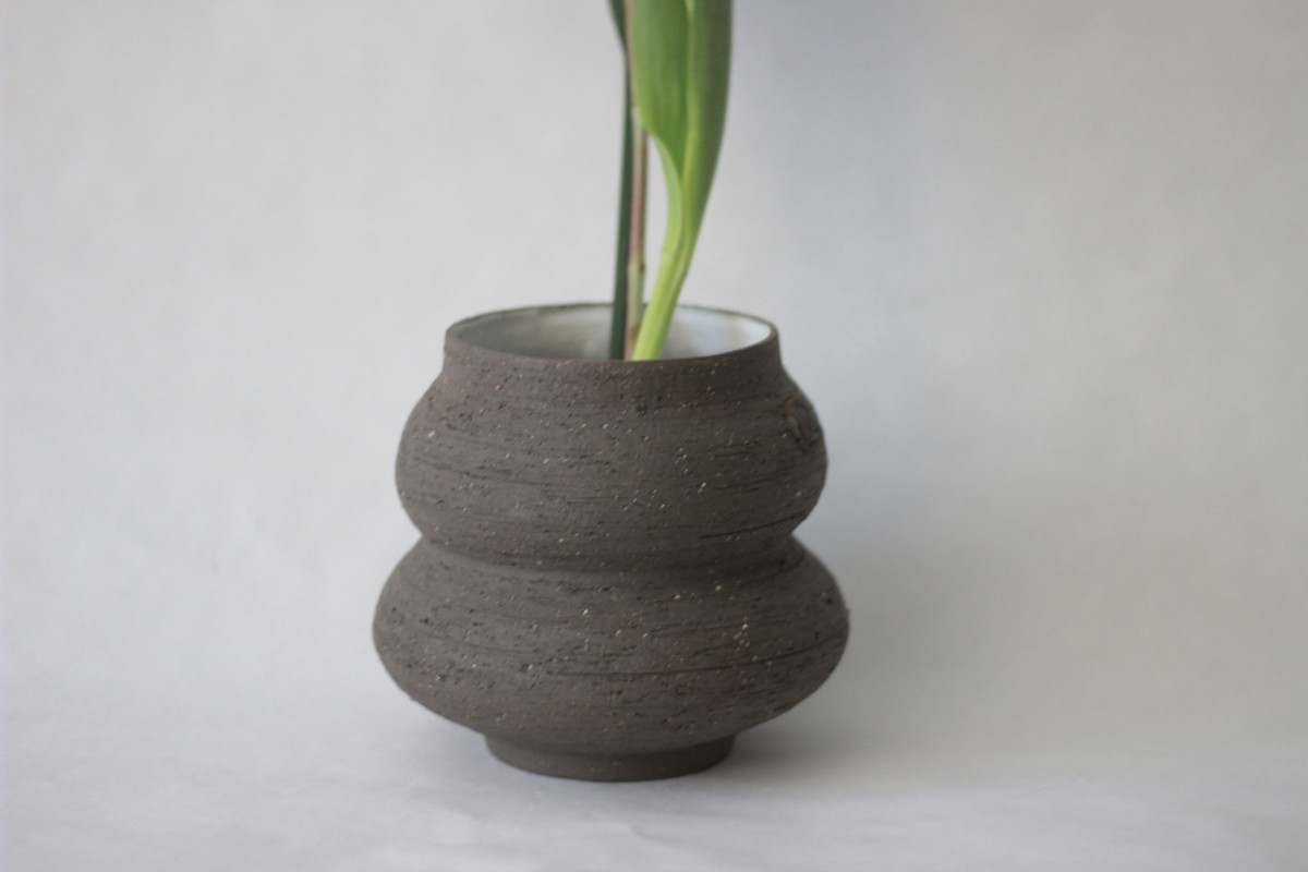 wide neck brown ceramic vase with plant on a white background close shot 1