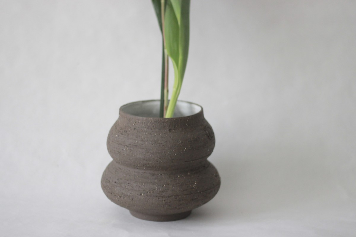 wide neck brown ceramic vase with plant on a white background close shot