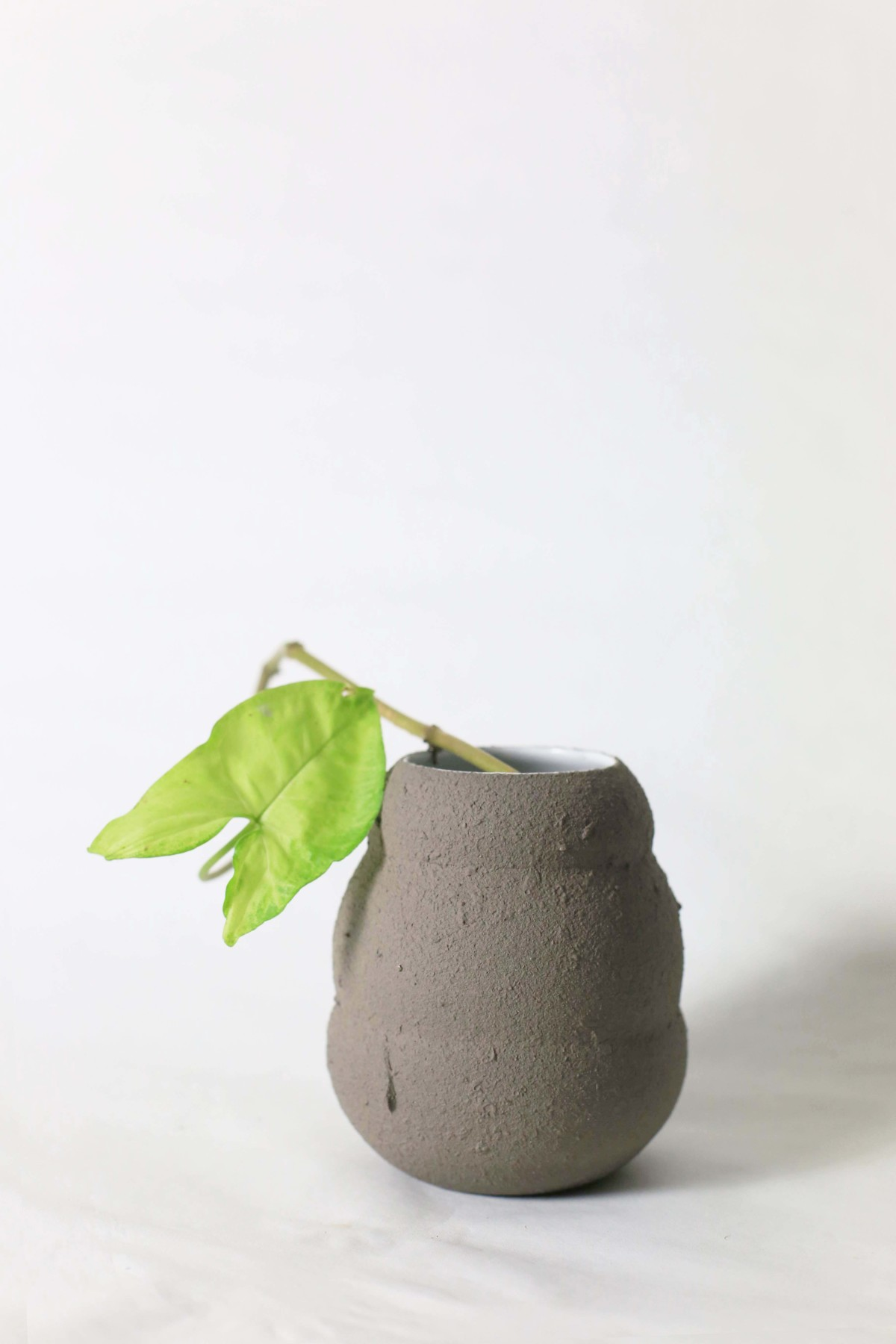 Graphite color ceramic vase in honey pot shape with green leaf on a white background close shot