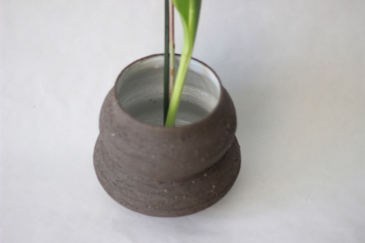 wide neck brown ceramic vase with plant on a white background over view 1