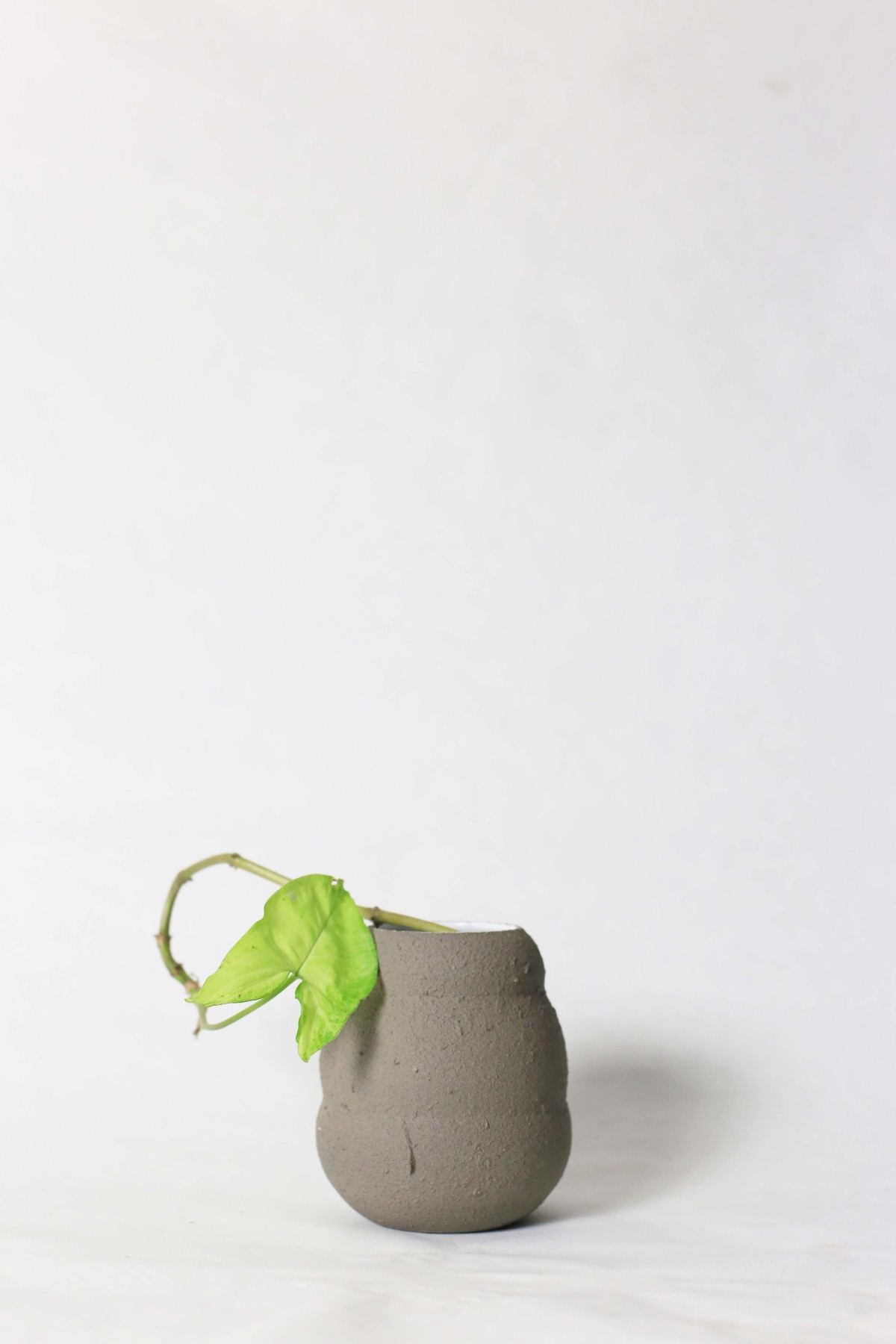 Graphite color ceramic vase in honey pot shape with green leaf on a white background