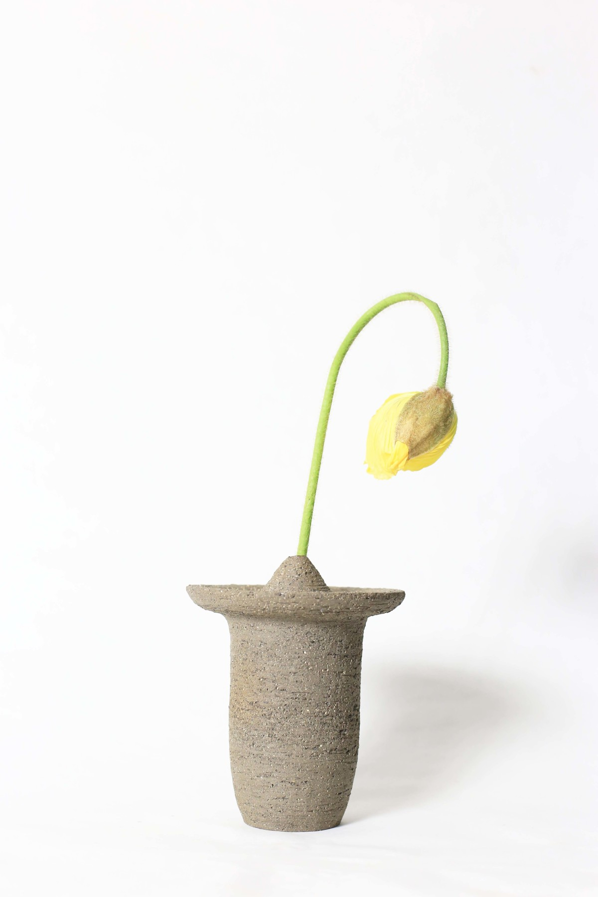 Ufo shaped gray ceramic vase with a yellow flower on a white background