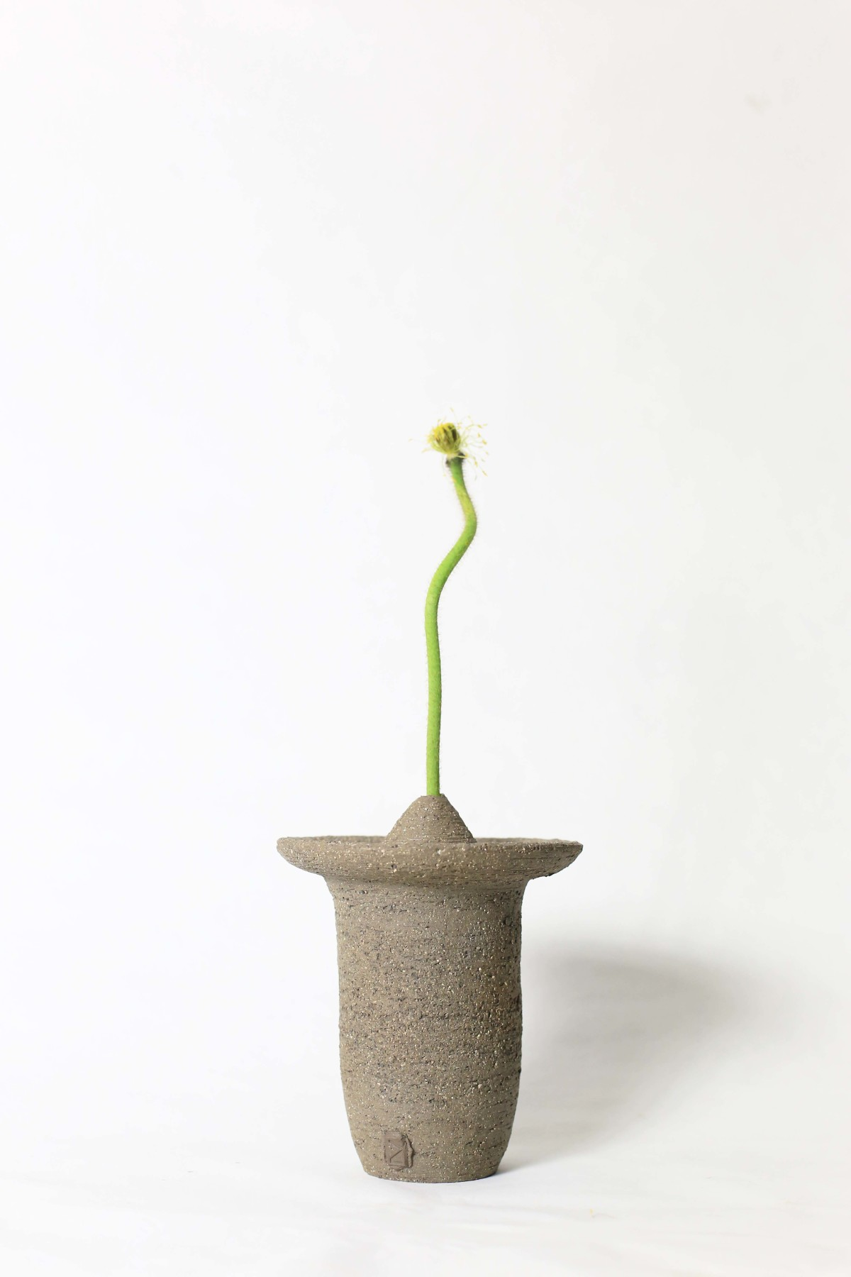 Ufo shaped gray ceramic vase with a flower stem on a white background 2