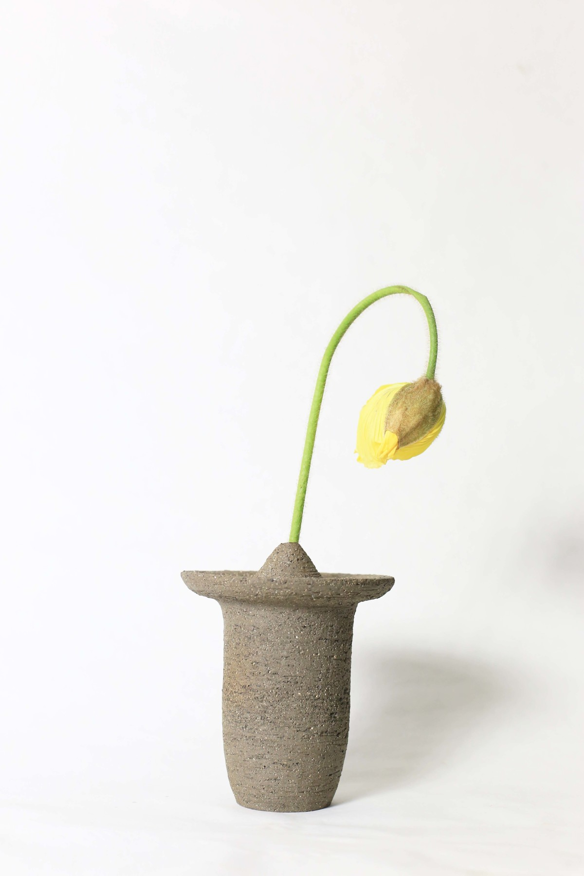 Ufo shaped gray ceramic vase with a yellow flower on a white background 2