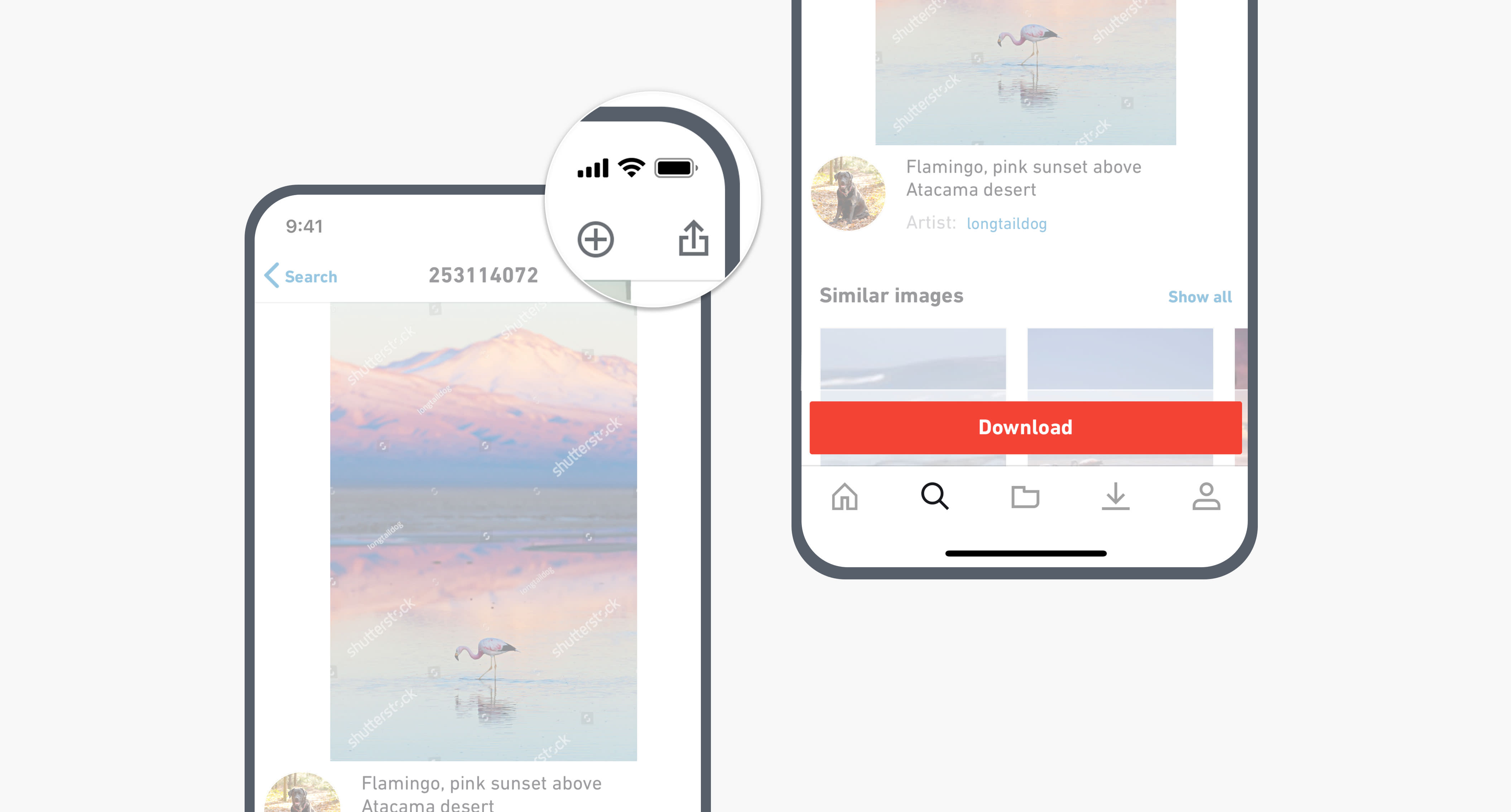 Shutterstock Mobile App for iOS and Android