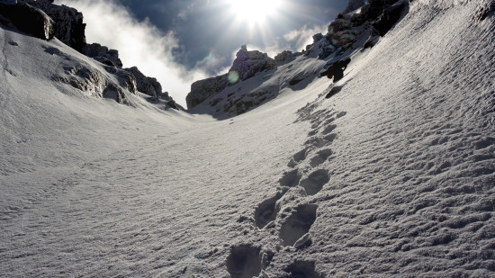 Tracks in the snow on a mountainside