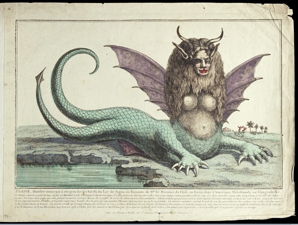 "The ""Peruvian harpy"": a harpy with two tails, Credit: Wellcome Library, London. Wellcome Images CC BY 4.0"