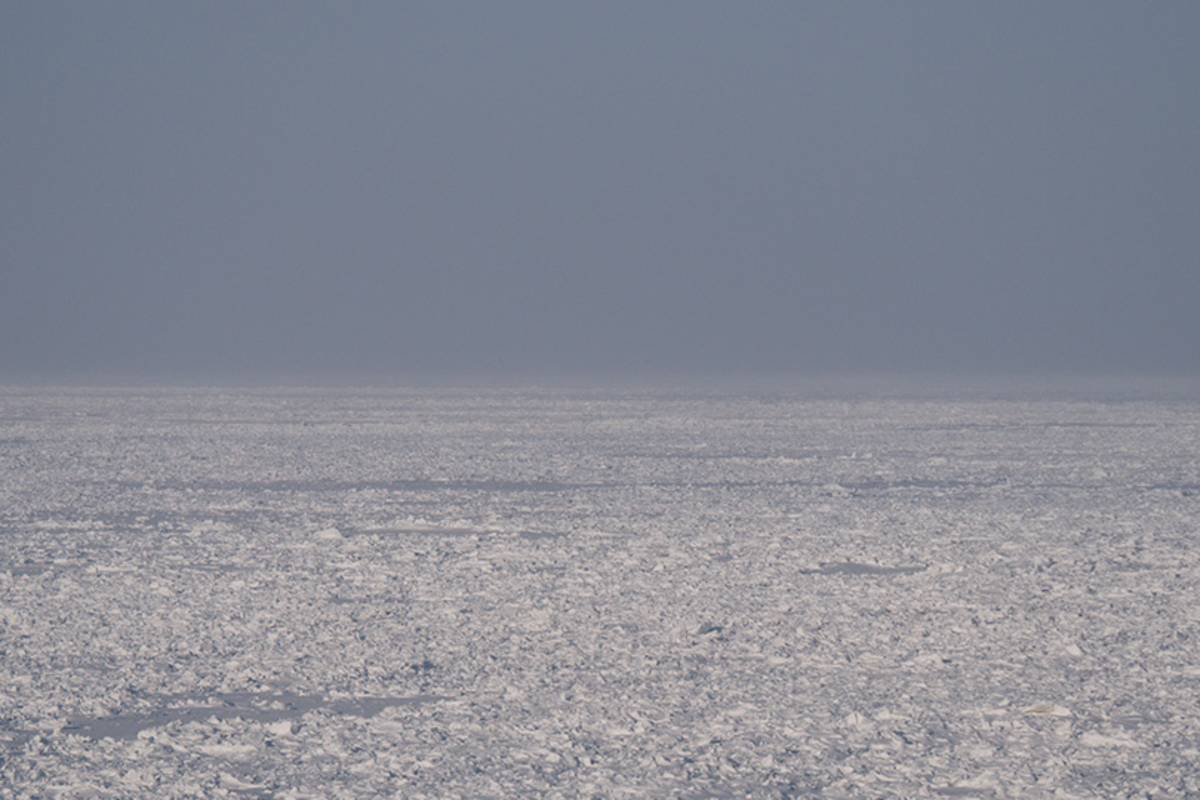 Frozen sea ice with a grey sky