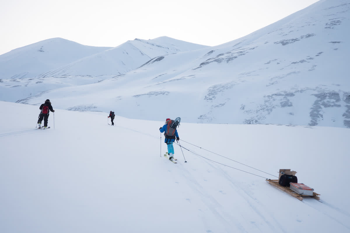 Polar bear researches head into the field on skis in Svalbard