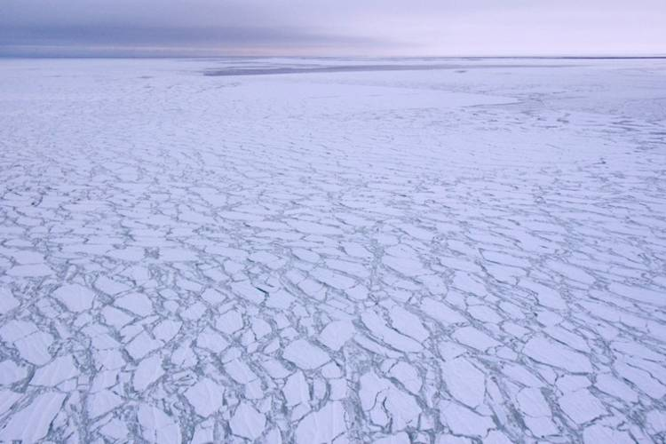 Overhead view of fragmented sea ice.