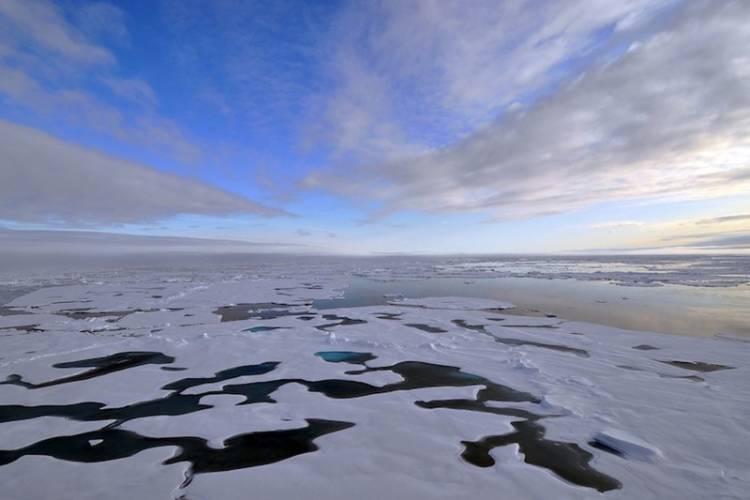 Bird's eye view of melting sea ice.