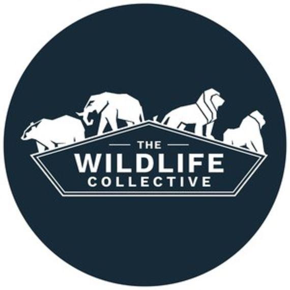 The Wildlife Collective logo