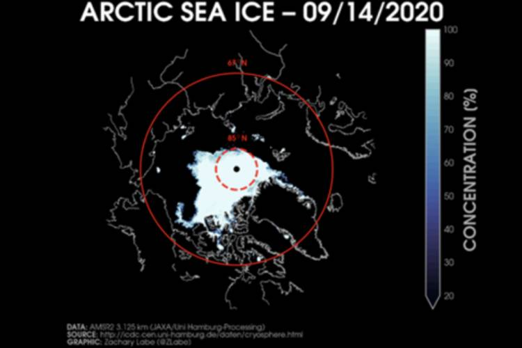 scientific image of a map of arctic sea ice concentration %