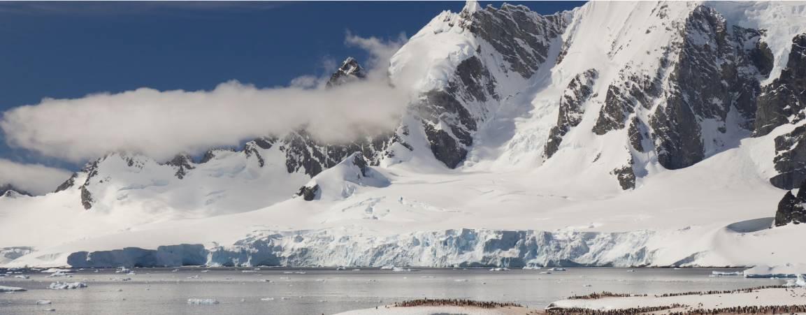 Arctic glaciers and sea ice