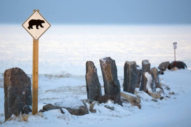 Polar bear sign along a rock fence image