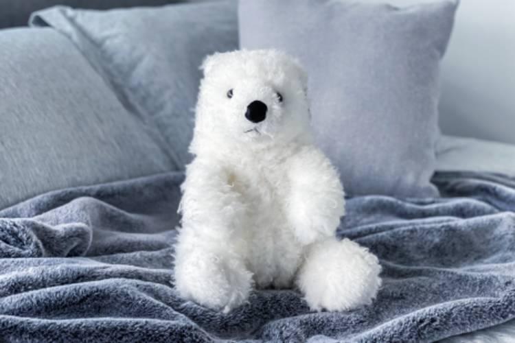 Plush bear from Adopt a Polar Bear program