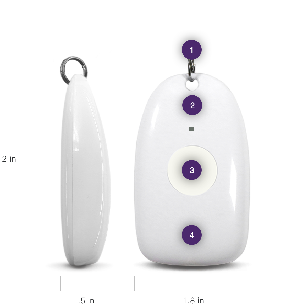 LivingWell Companion Home with fall detection pendant