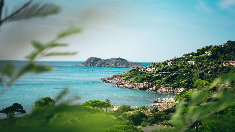 Provence-Alpes-Côte d'Azur - banner image