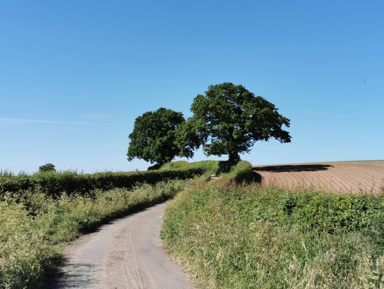 Shropshire - banner image