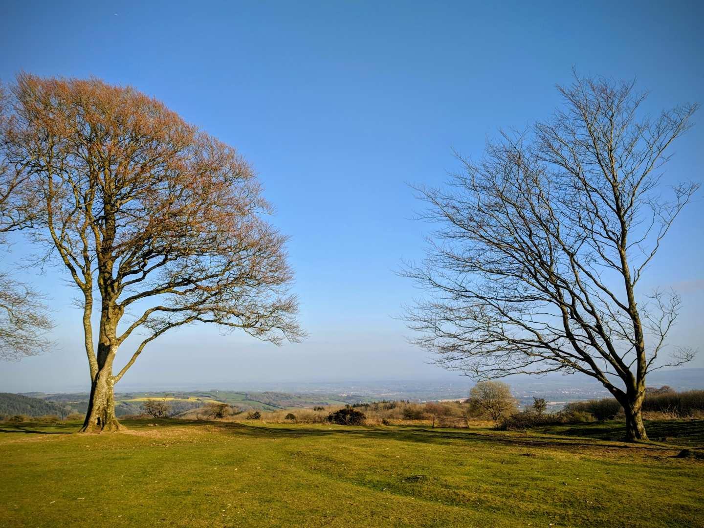 Somerset - banner image