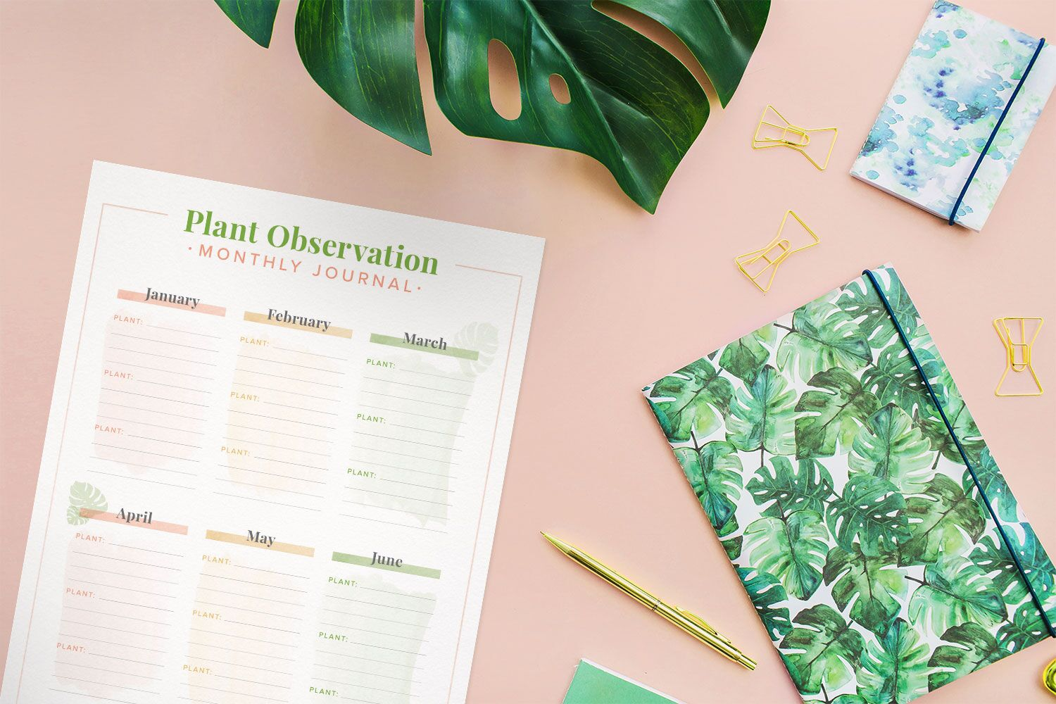 plant observation journal on a pink desk with a plant leaf in the image