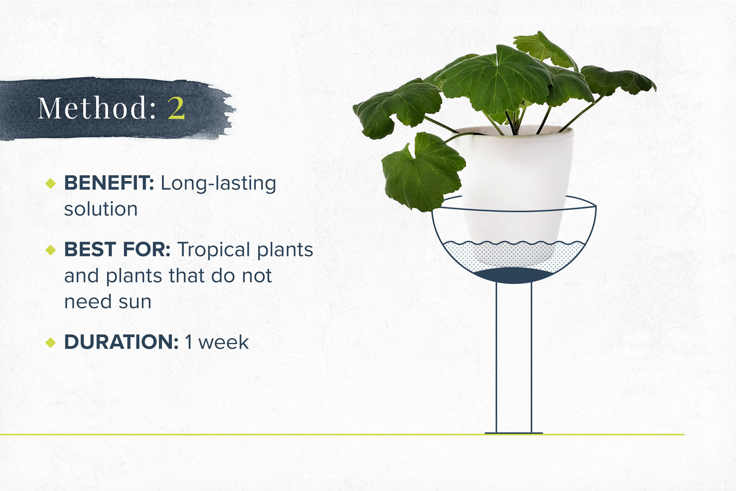 How to Water Plants While Away 20 DIY Methods   ProFlowers Blog
