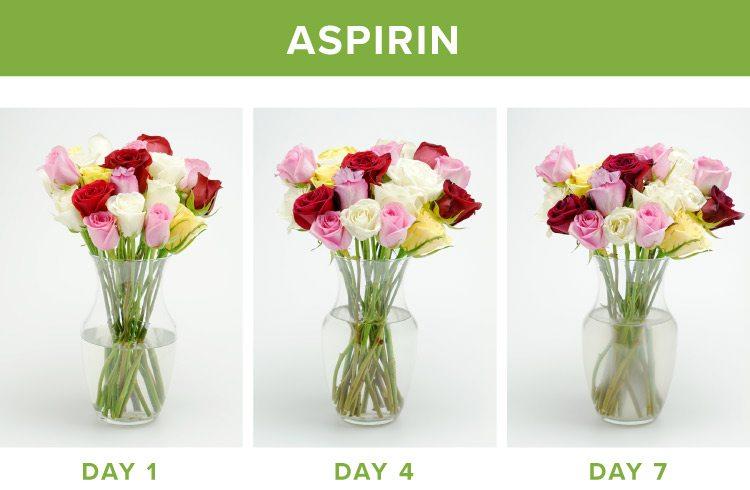 how to make flowers last longer aspirin