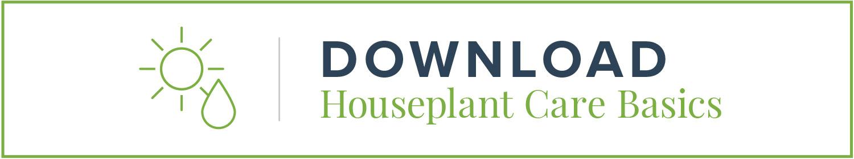 house-plant-care-basics-button-1