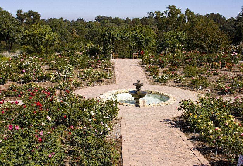 South Coast Botanic Garden