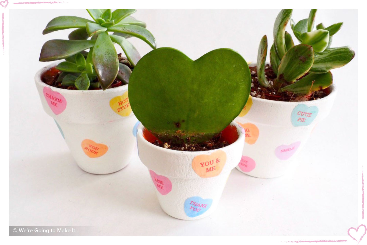 how to surprise your girlfriend DIY cacti