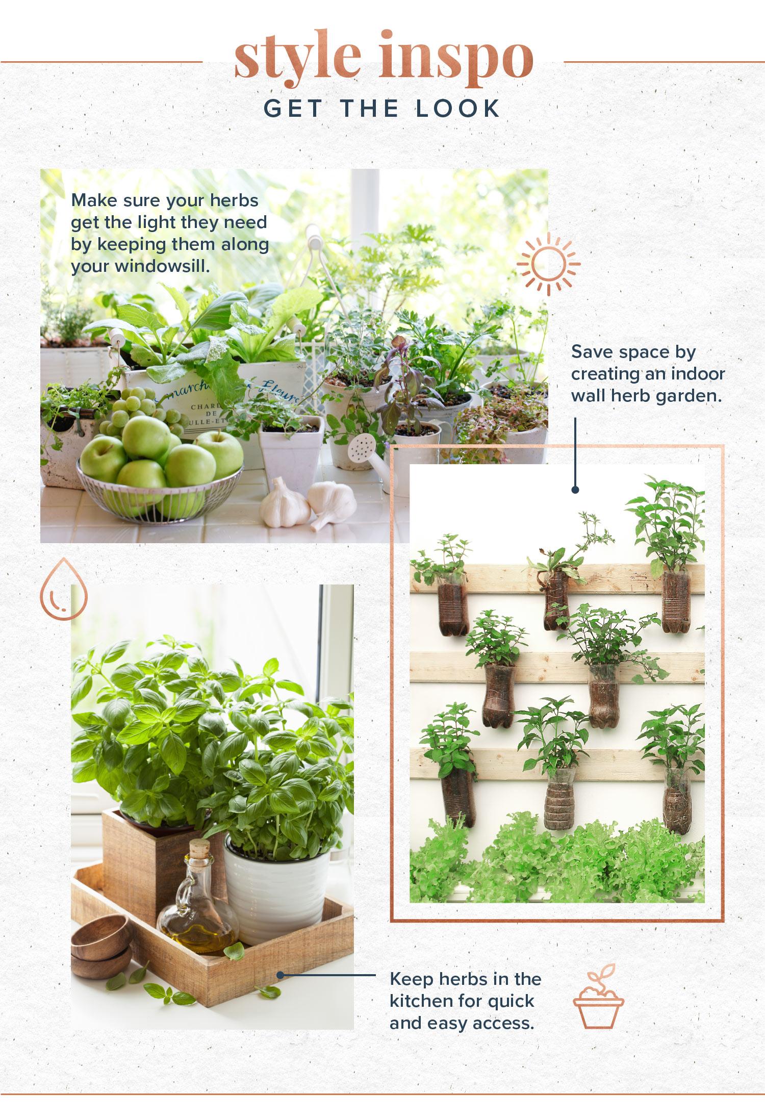 indoor herb garden styling tips