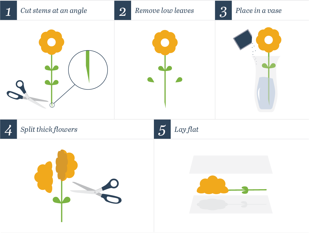 how to prep flowers for flower pressing
