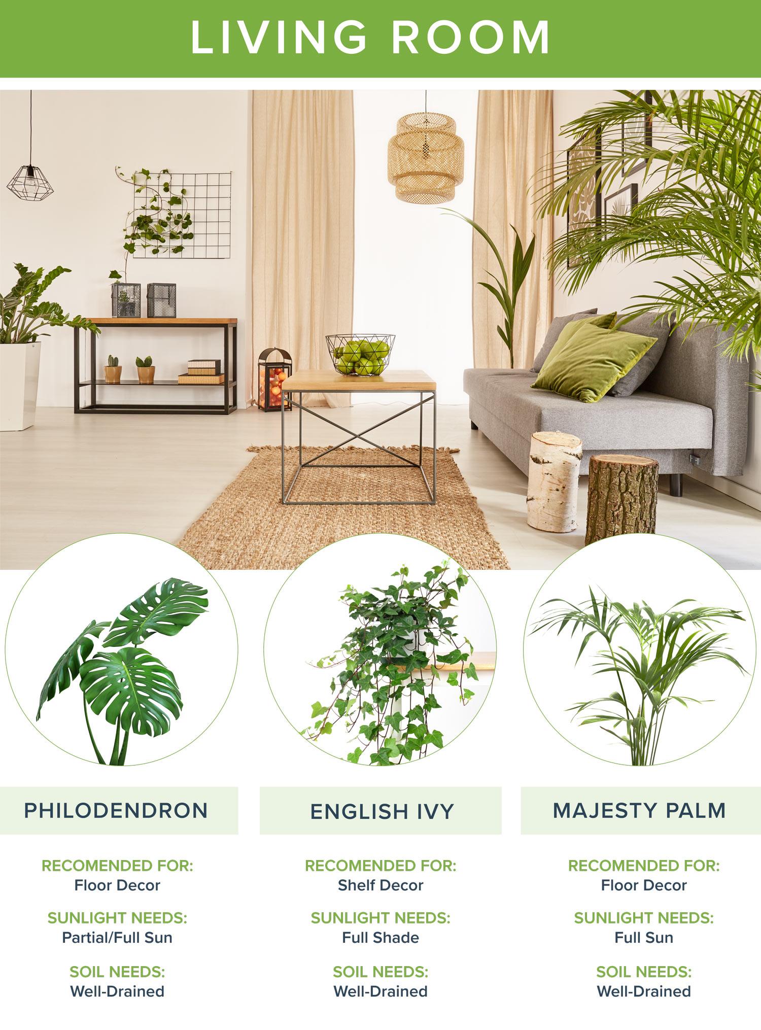 best house plants