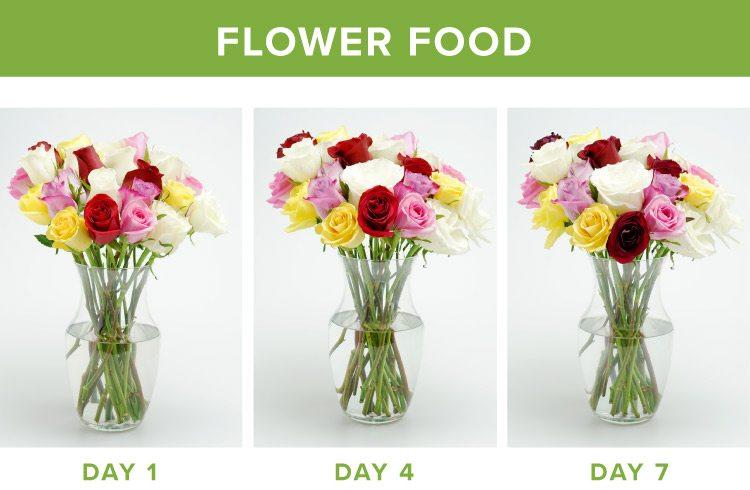 how to make flowers last longer flower food