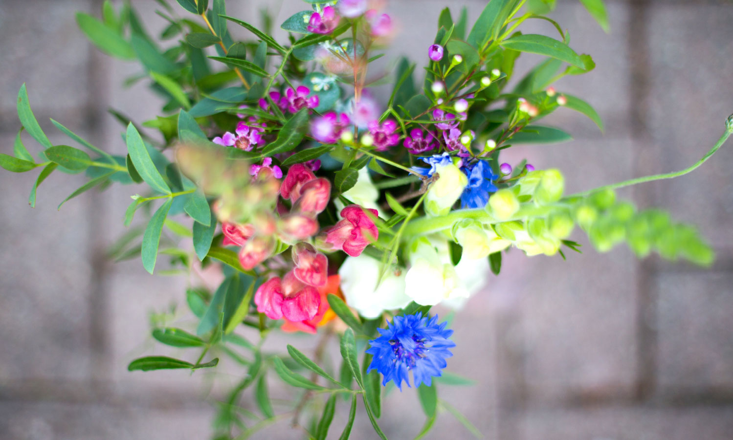 bouquet of annual flowers